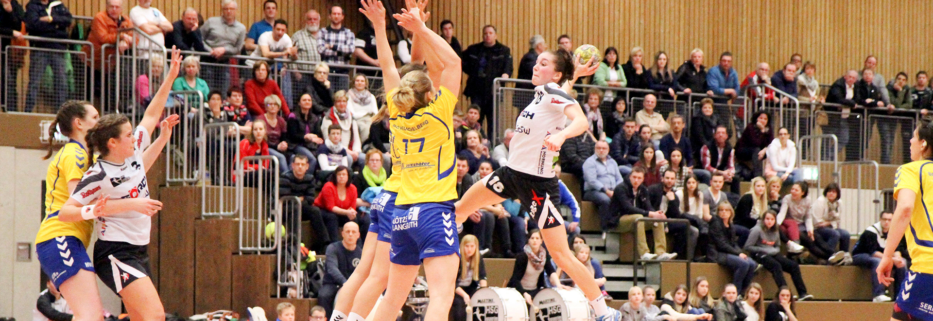 demo_handball